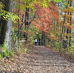 visitors hiking on a park trail in fall