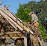 Spanish carpenters thatch a roof on an authentic Spanish Chosa