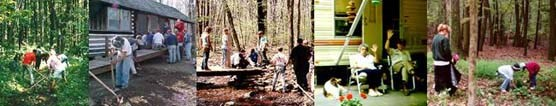 A collage of volunteer opportunities, left to right, trail work, cabin camp cleanups, campground hosts, and exotic plant removal project.