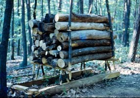 Wagon carrying logs to the hearth site for stacking.