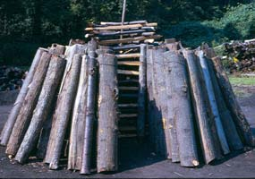 Wood is stacked by a collier, leaving a chimney in the center.