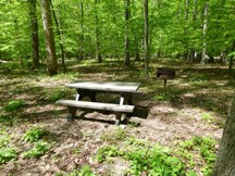 Owens Creek Picnic Area showing picnic table and grill