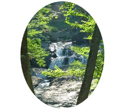 Photo of Cunningham Falls