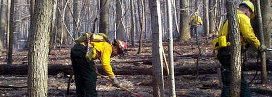 Firefighters at Wolf Rock fire 11/14/2001