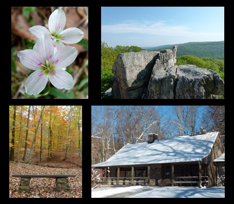 Four seasons of fun in Catoctin Mountain Park! Photos: Spring Beauty flowers, Chimney Rock in the Summer, Fall Colors, the visitor center in the winter.