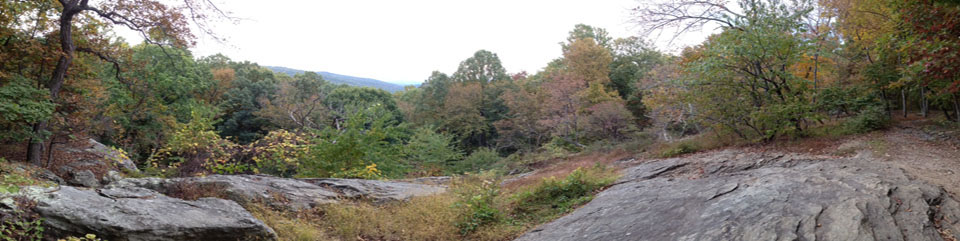 Rocks and fall color at Hog Rock Vista