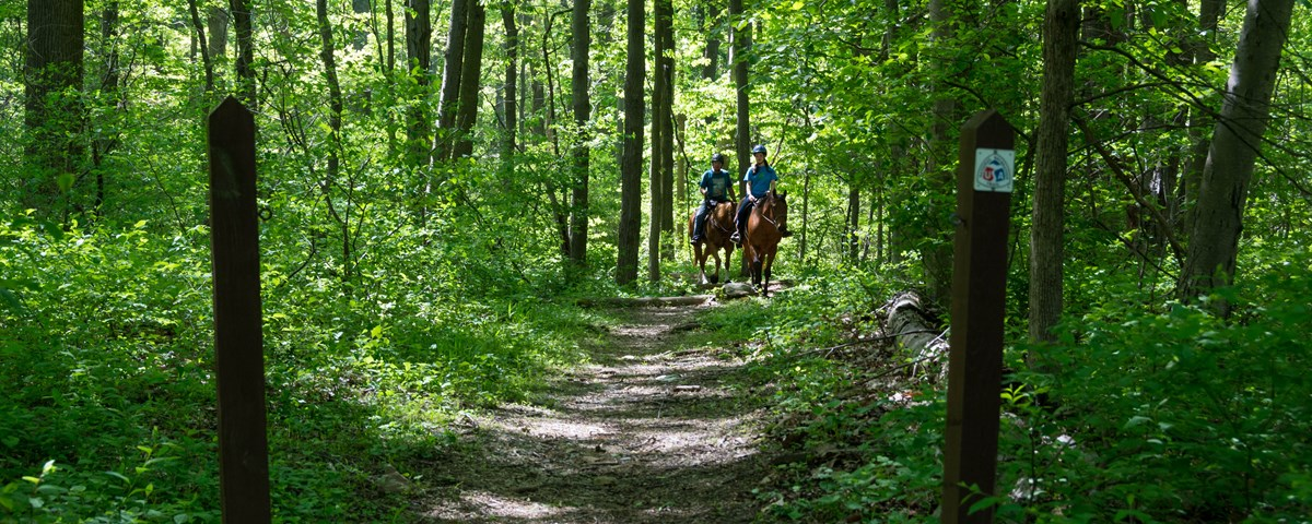 Horse Trail sign with trail extending into wooded area. The horseback riders on trail at a distance