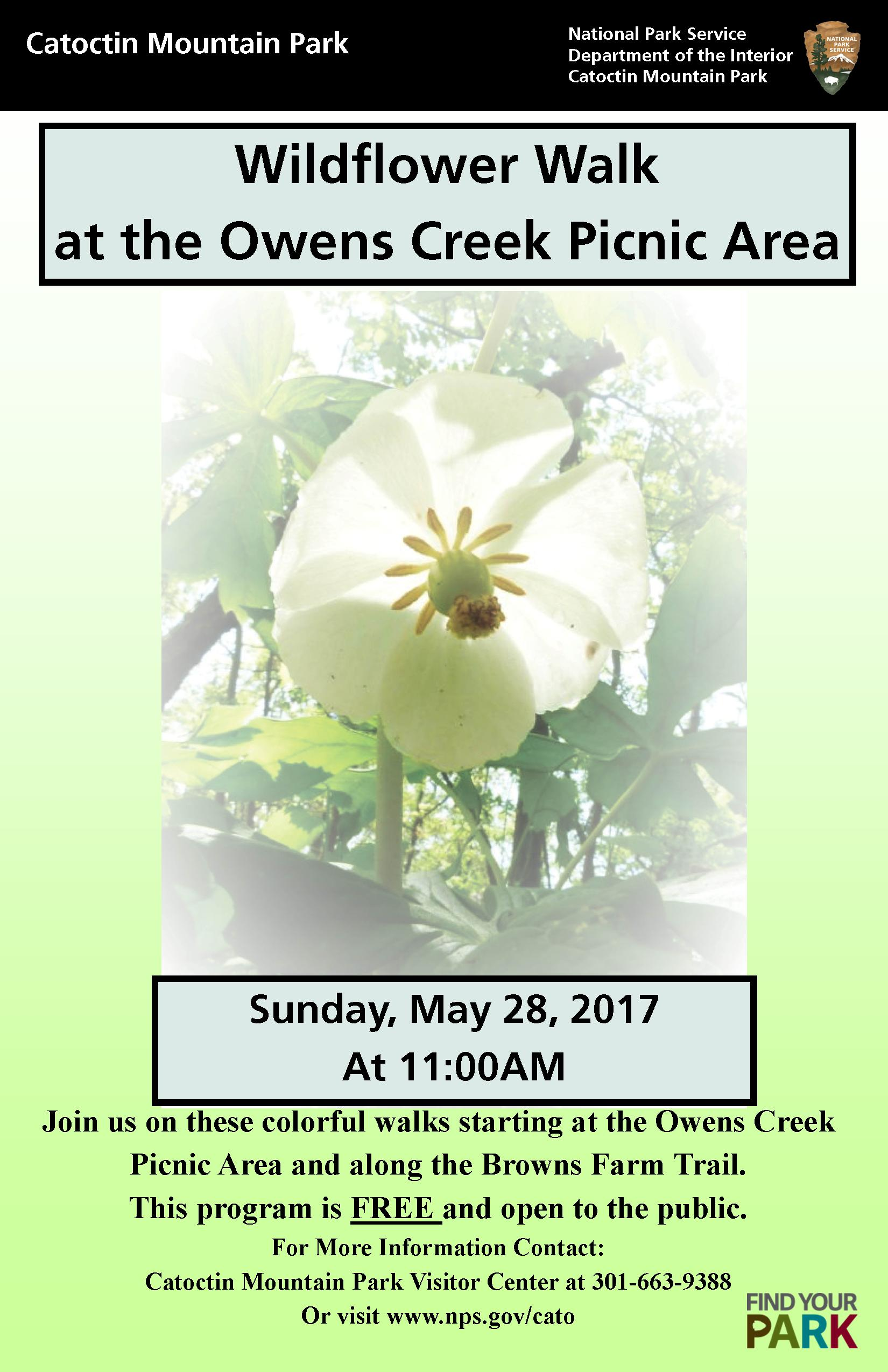 May 28 Wildflower Walk Poster Image