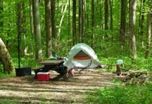 Scenic View of Camping at Owens Creek Campground