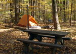 Owens Creek Camping