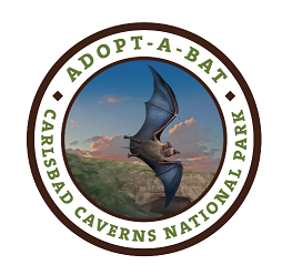 Adopt-A-Bat logo showcasing the Brazilian free-tailed bat emerging from the cavern.