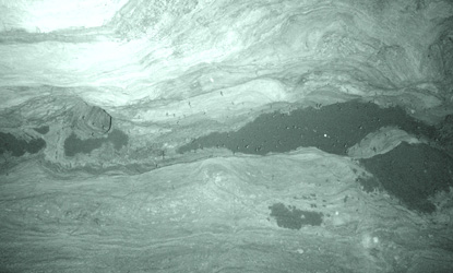 Infrared photo of the Brazilian (aka Mexican) free-tailed bat roost in Bat Cave in Carlsbad Cavern. Notice that bats do not sleep all day – some are flying around.