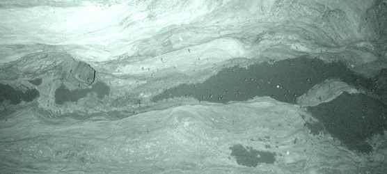 Infrared photo of bats in Bat Cave within Carlsbad Cavern.