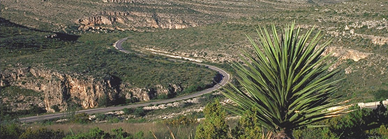 Walnut Canyon drive is a seven-mile scenic drive to the park visitor center.