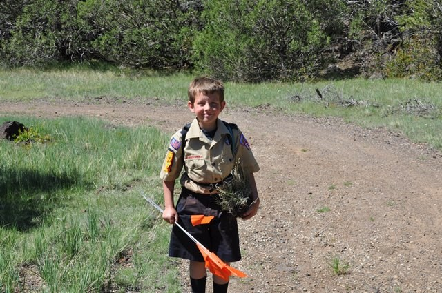 A Scout poses for the camera.  He holds an orange marking flag in his left hand and a clump of grass in his right.