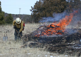 color photograph of firefighter burning brush pile