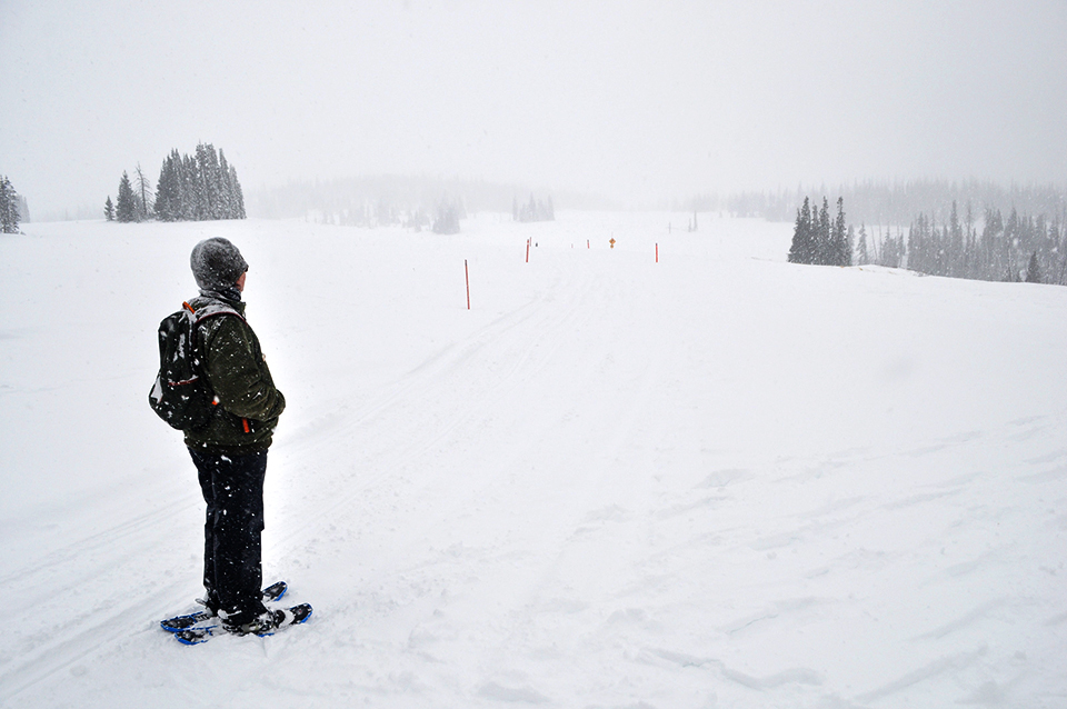Person dressed for winter hiking on snowshoes, gazing at a snowy landscape.