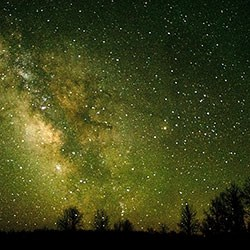 Night sky with the milky way galaxy and the silhouette of trees in the foreground.