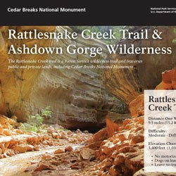 Close up capture of rattlesnake trail brochure