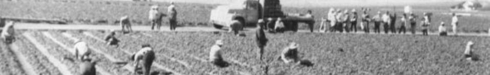 Workers in a field as a protest begins.