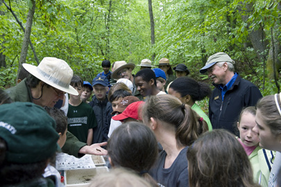 Director Jarvis and students from Westminster School learn about stream macroinverabrates.