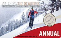 2020 Interagency Annual Pass with image of down hill skier.