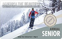 2020 Interagency Senior Annual Pass with image of down hill skier.