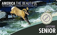 2020 Interagency Lifetime Annual Pass with image of Bighorn Sheep jumping stream.
