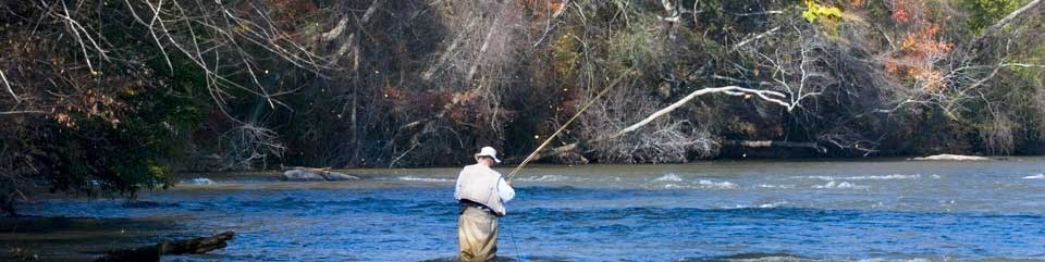 Fisherman picking the right fly for the shoals.