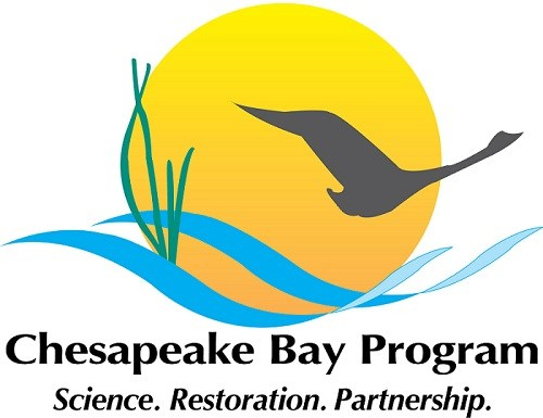 Logo with bird flying over water and near marsh