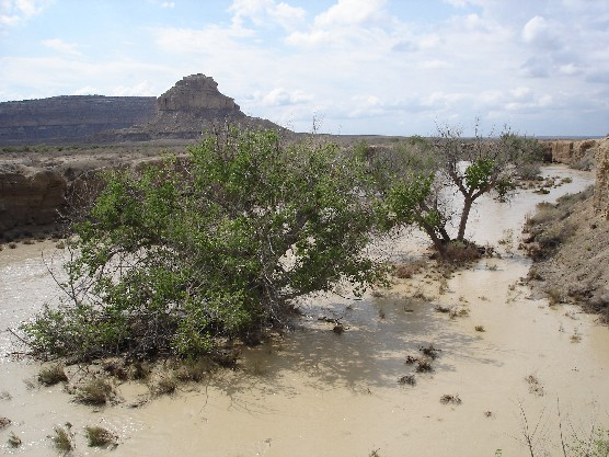Photo of Chaco Wash in flood