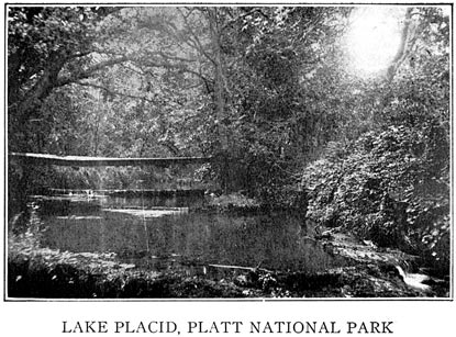 Historic view of the Lake Placid area on Travertine Creek