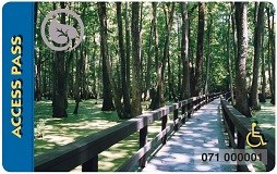 Access Pass depicting a boardwalk through a swampy forest