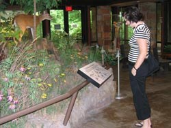 Viewing exhibits in the nature center