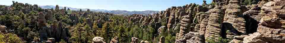 Standing rock formations with conifer trees