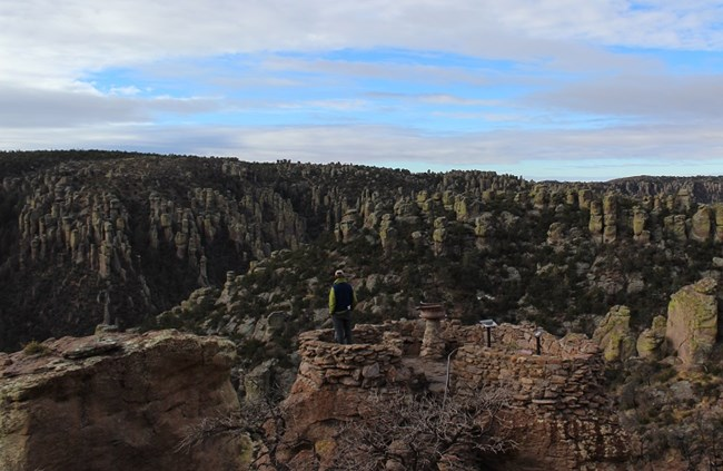 Man standing on rock platform looking into canyon full of standing rocks.