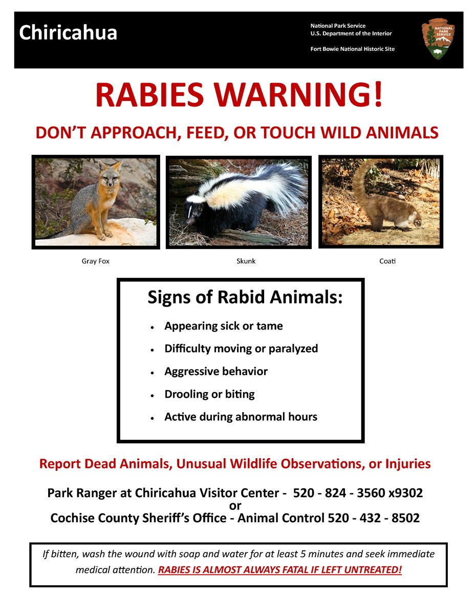 Rabies warning: do not touch, feed, or approach wild animals