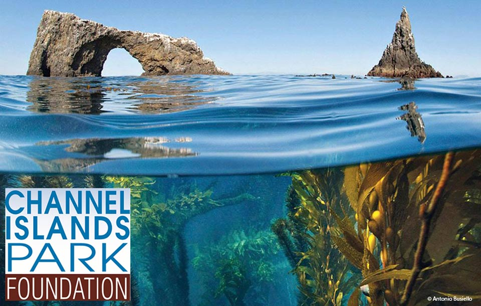 Channel Islands National Park Natural Resources