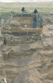 Archeologists excavate Arlington Springs on Santa Rosa Island