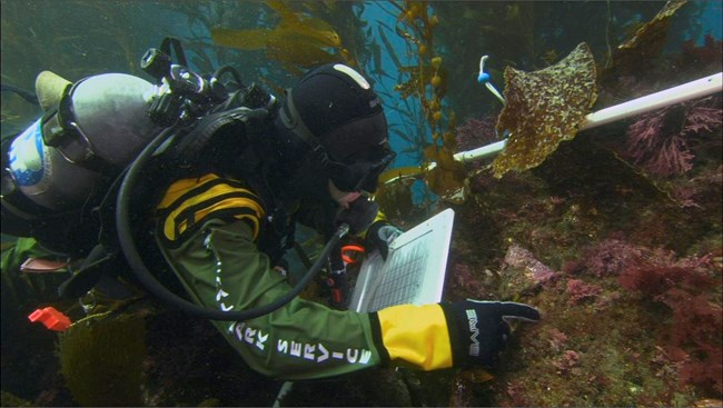National Park Service diver recording data underwater