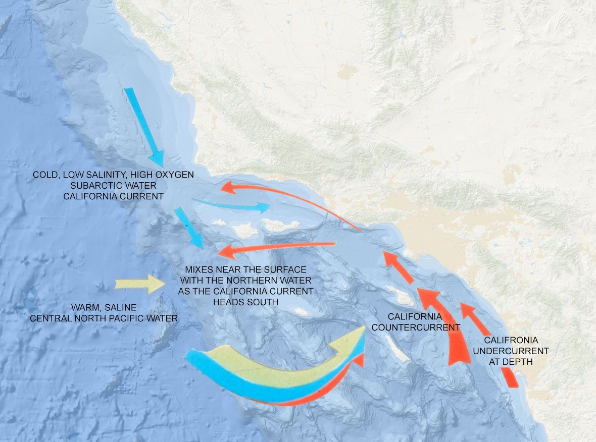 Currents and Upwelling - Channel Islands National Park (U.S. ...