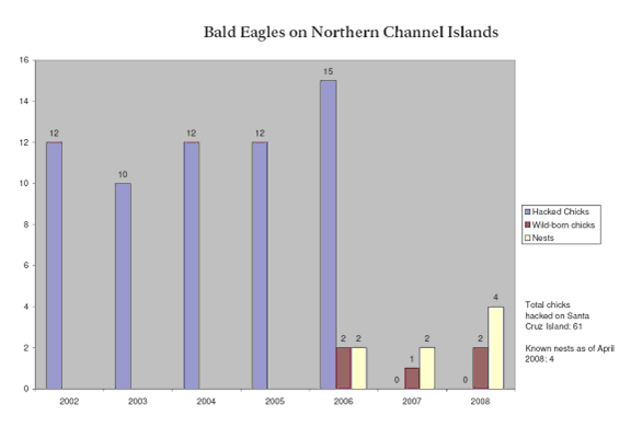 bald eagle chart for northern channel islands