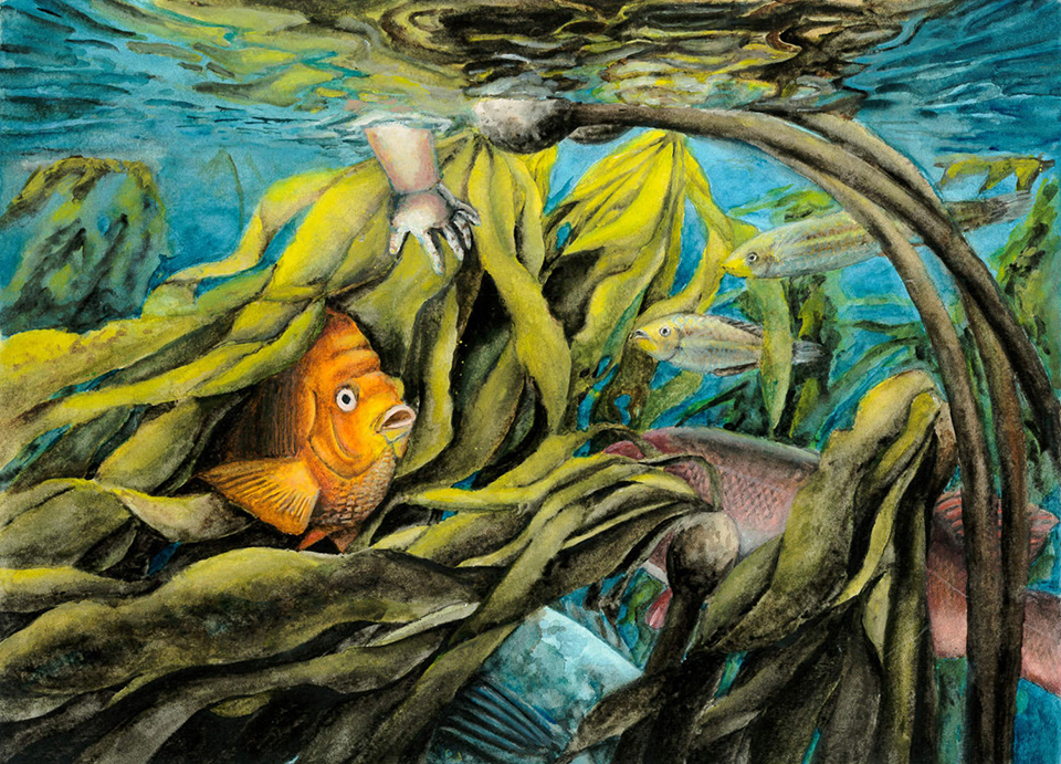 Painting of kelp forest with orange fish and chlds hand reaching in water.