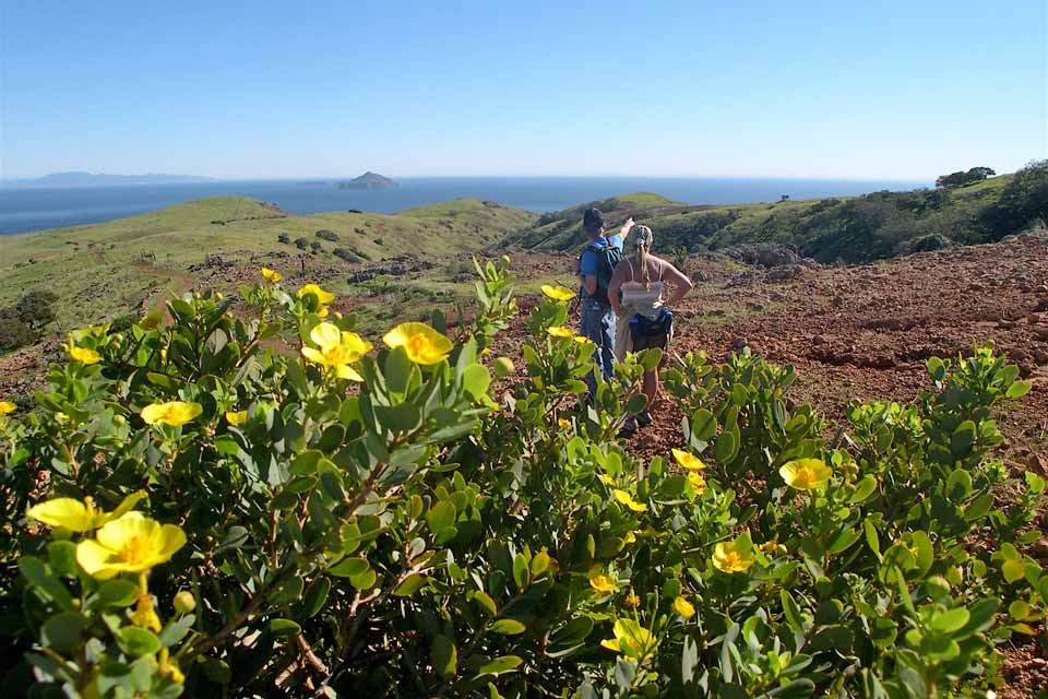Hiking Santa Cruz Island Channel Islands National Park US
