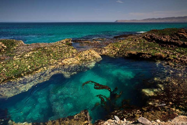 Things To Do: Santa Rosa Island - Channel Islands National Park ...
