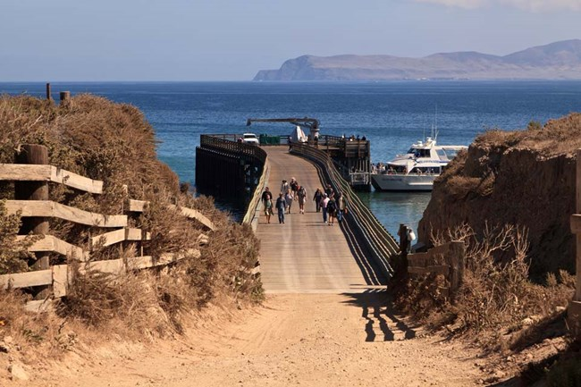 When To Visit - Channel Islands National Park (U.S. National ...