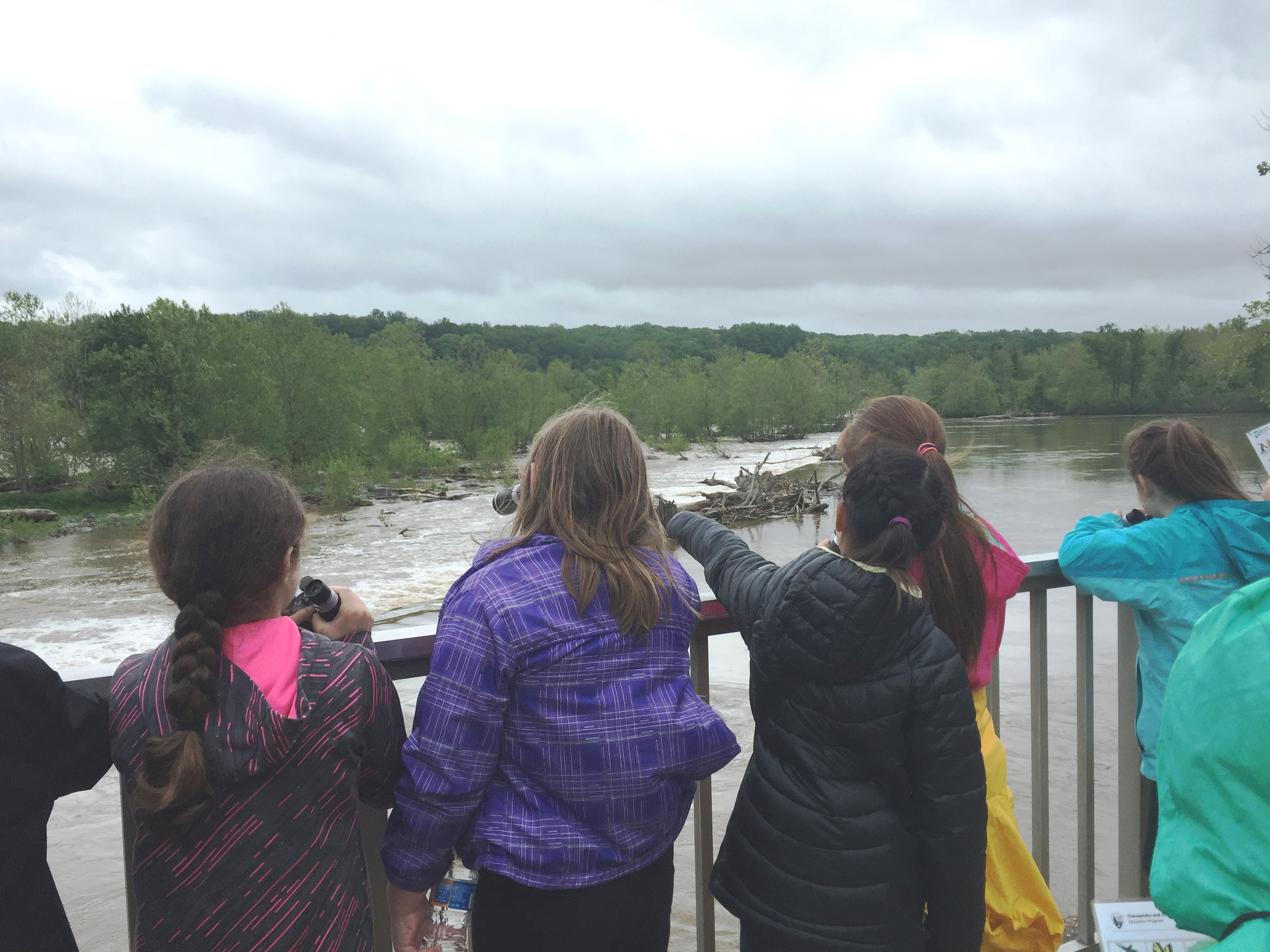 Kids at Great Falls Looking out over the Potomac