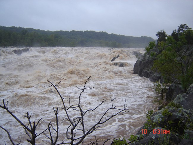Raging Potomac River above flood stage.
