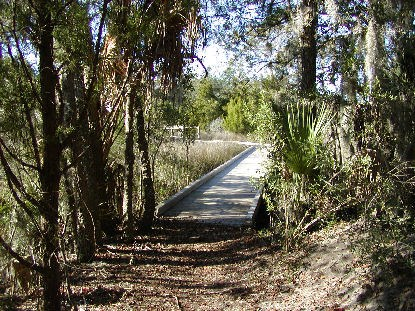 Boardwalk on the trail at Charles Pinckney NHS