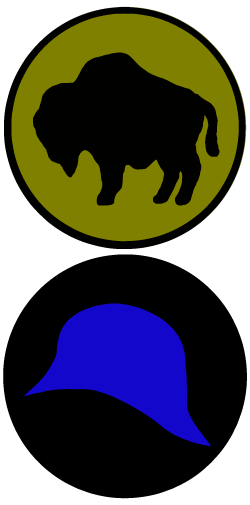An image of a buffalo inside of a circular design and a blue helmet inside a black circle
